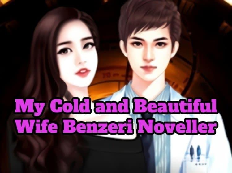 My Cold and Beautiful Wife Benzeri 5 Novel Önerisi